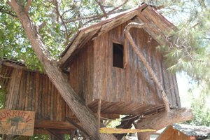 Turkmen Tree Houses Olympos